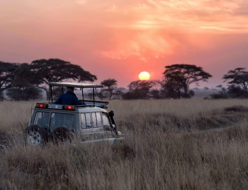 Top African Tourism trends for 2021
