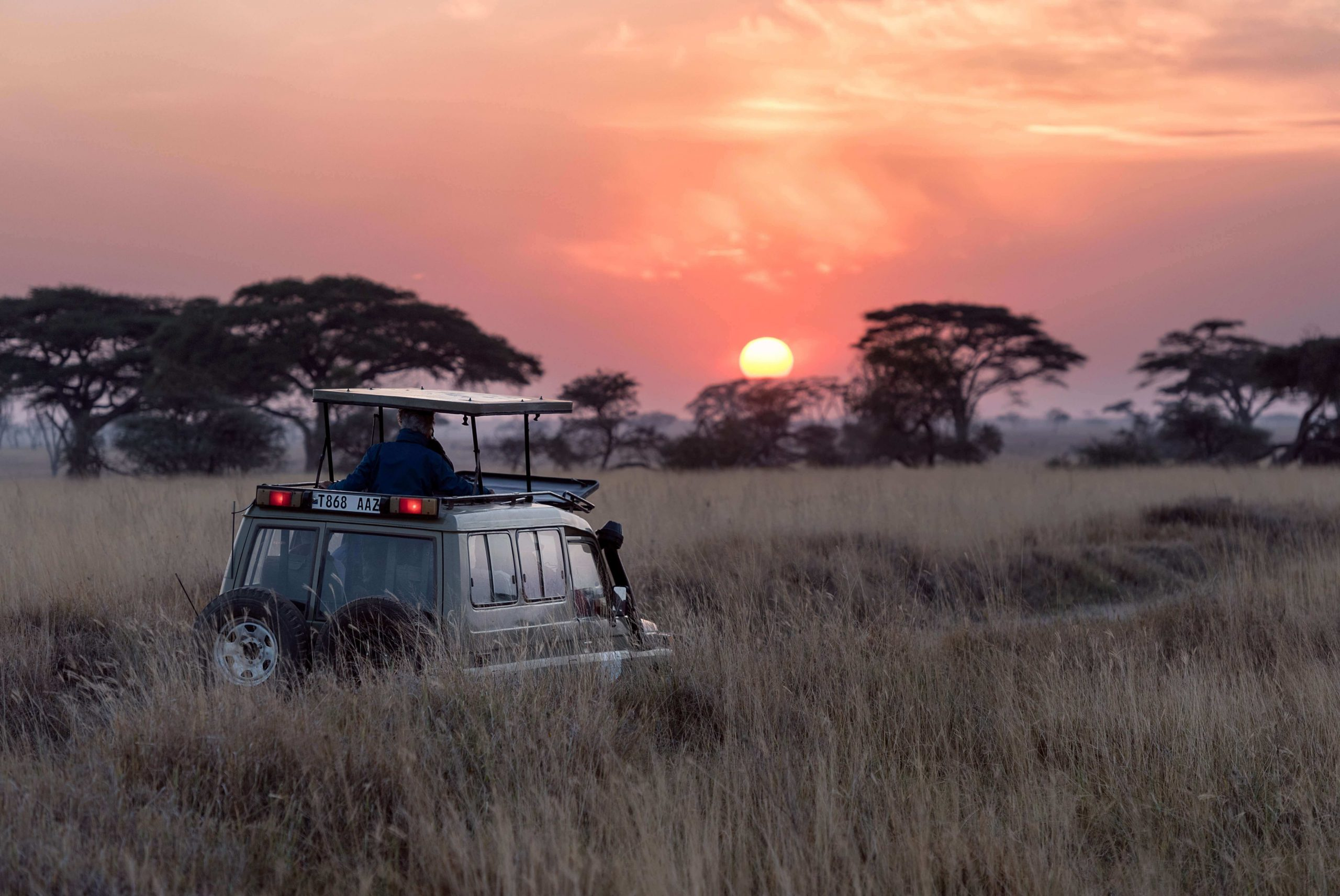 African Tourism Trends unsplash